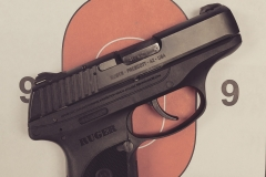 Ruger LC380, 380 ACP